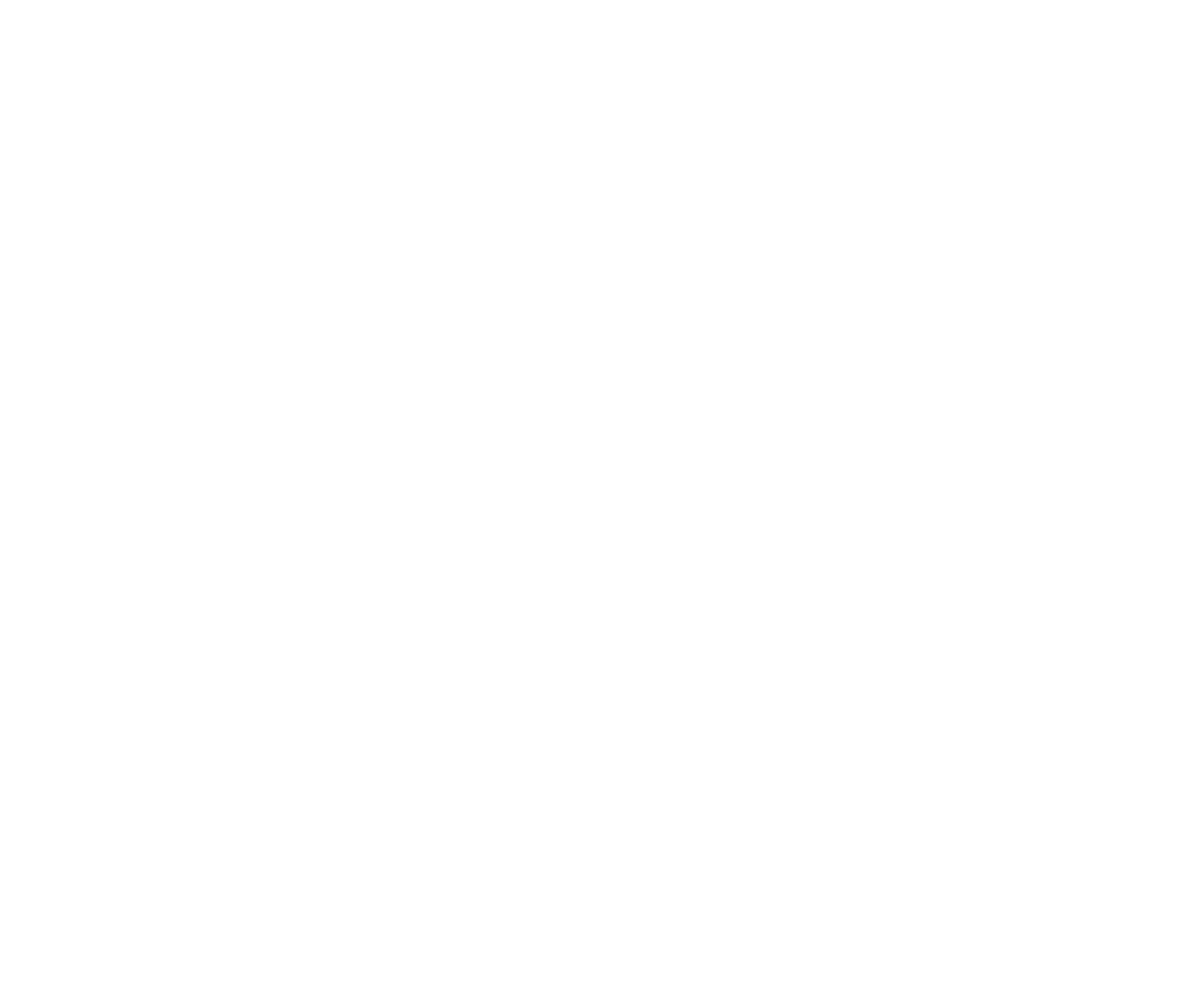 Reunion | Marketing agencija